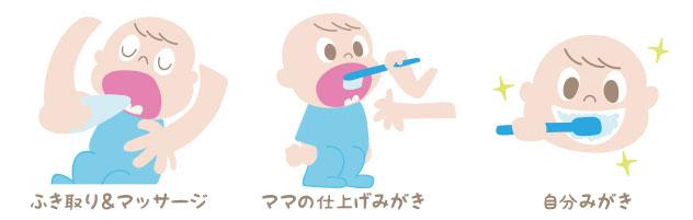 歯ブラシの段階