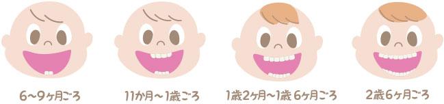 虫歯歯の三大要素